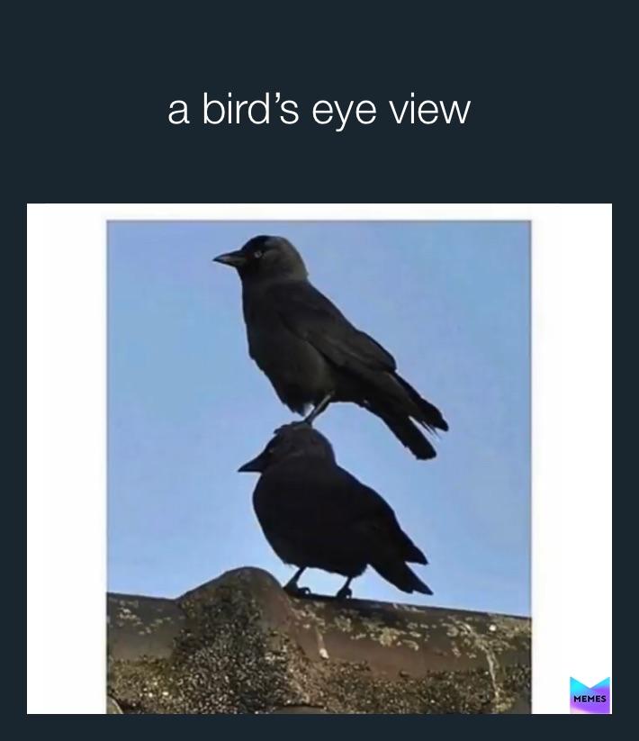 Yert Memes Find And Share Memes Zobacz, co v yert (v_yert) odkrył(a) na pintereście — największej na świecie kolekcji pomysłów. memes